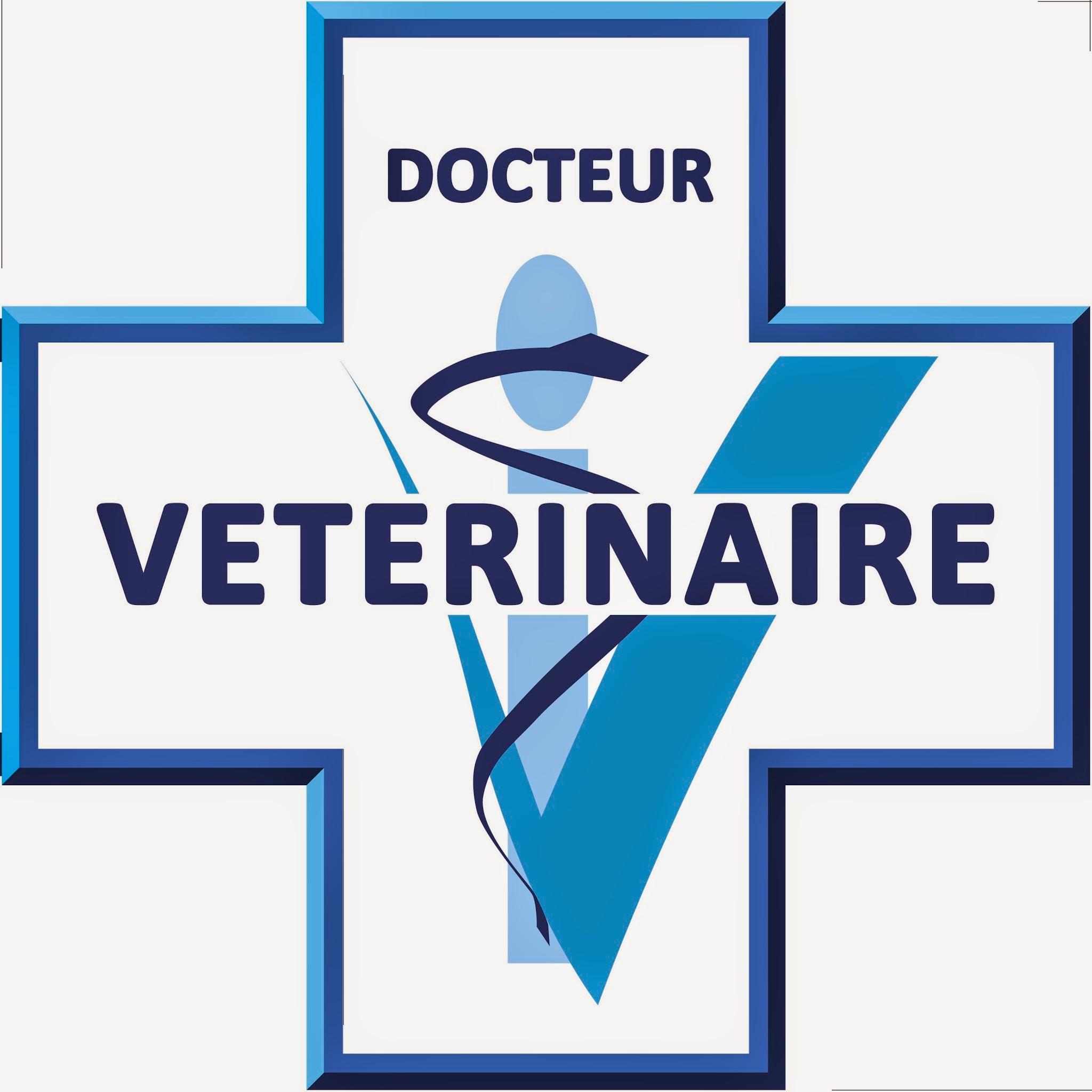 Site de rencontre veterinaire